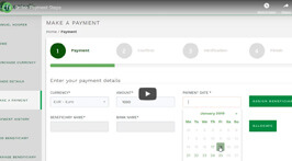 Video Cover: Online Payments
